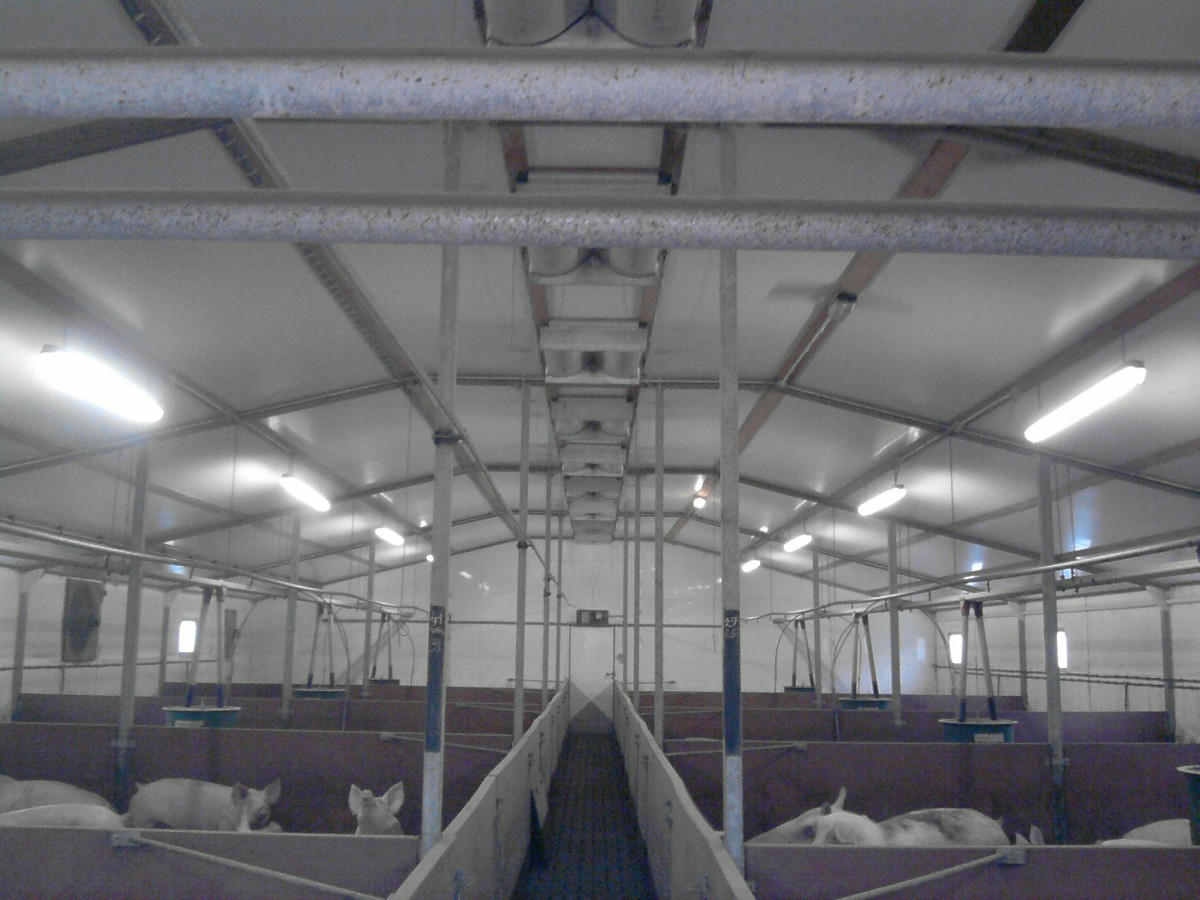 Plafondventiel Horizontaal PVH